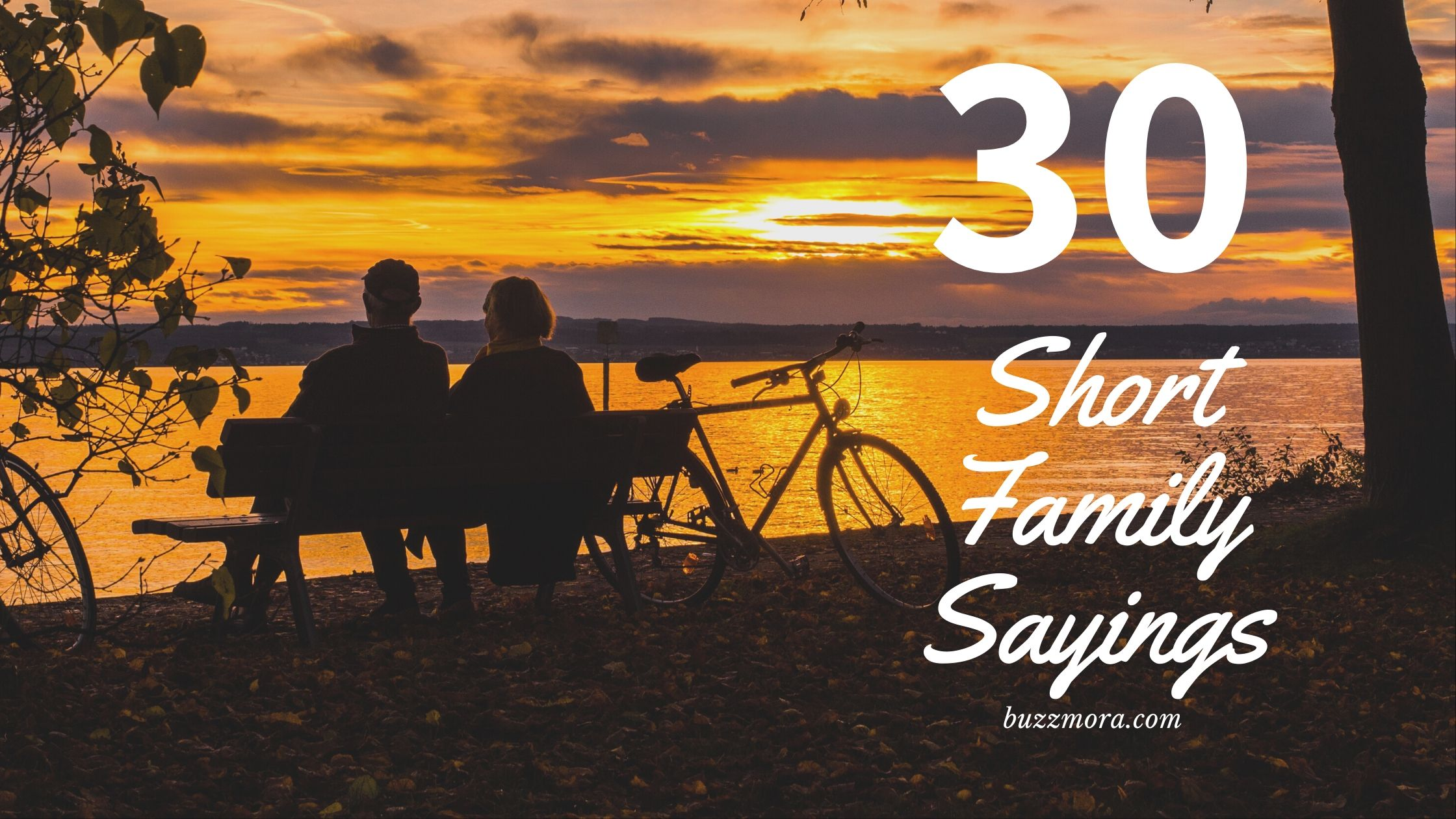 Family Quotes - 20 Short Family Sayings for you